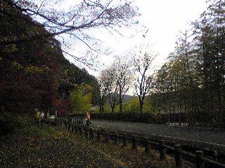 茨城北部に来ています