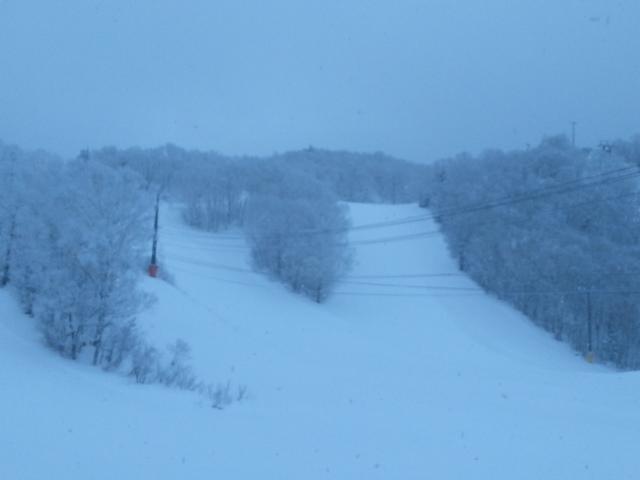 最終日は朝から雪